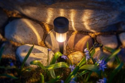 How to use solar lights in your garden